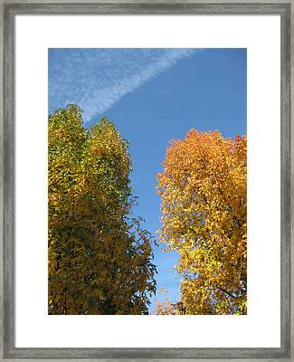 Equinox Framed Print by James Barnes