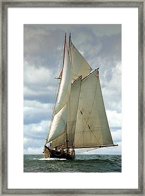 Ernestina Framed Print by Fred LeBlanc