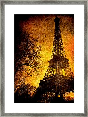 Esthetic Luster Framed Print by Andrew Paranavitana