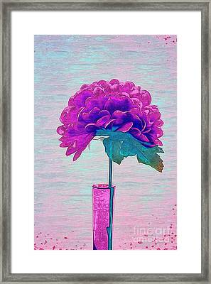 Estillo - Sp86d2 Framed Print by Variance Collections
