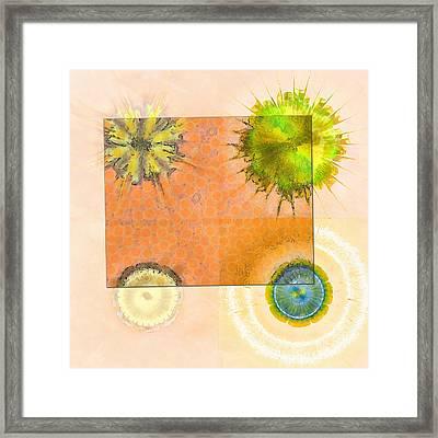 Eternalise Concrete Flower  Id 16165-215036-91401 Framed Print by S Lurk