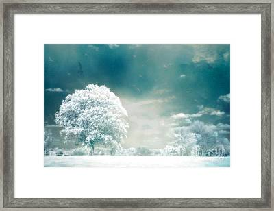 Ethereal Surreal Dreamy Nature Trees Landscape - Aqua Teal Mint Infrared Nature  Framed Print by Kathy Fornal
