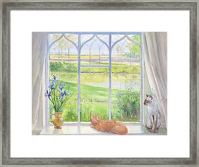 Evening Breeze Framed Print by Timothy Easton