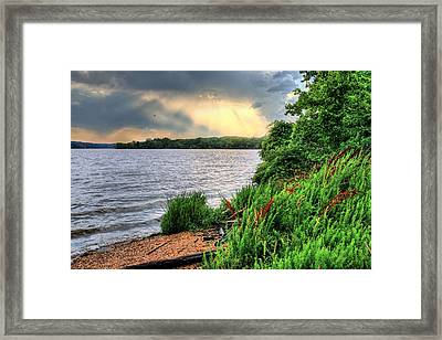 Evening Flight Framed Print by JC Findley