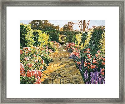 Evening Garden Sussex England Framed Print by David Lloyd Glover