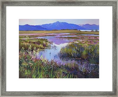 Evening In The Marsh Framed Print by Bonita Paulis