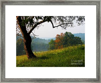 Evening In The Pasture Framed Print by Thomas R Fletcher