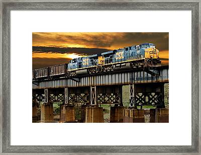 Evening Run Framed Print by Tim Wilson