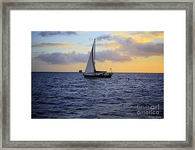 Evening Sail Framed Print by Cheryl Young
