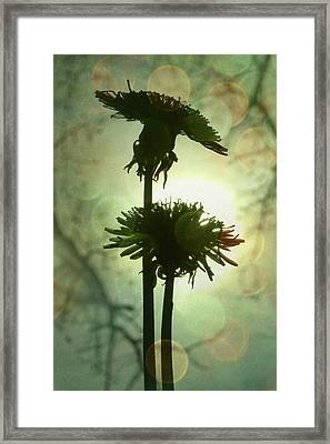 Ever After Framed Print by Amy Tyler