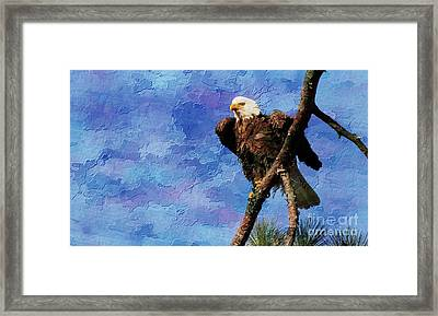 Ever Watchful Framed Print by Geraldine DeBoer