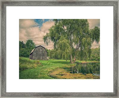 Evergreen Trails Framed Print by Guy Whiteley