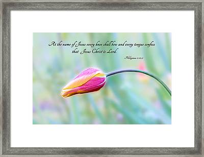Every Knee Shall Bow Framed Print by Mary Jo Allen
