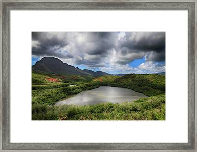 Everything Framed Print by Laurie Search