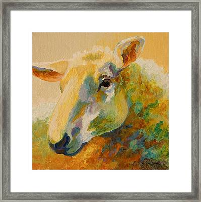 Ewe Portrait IIi Framed Print by Marion Rose