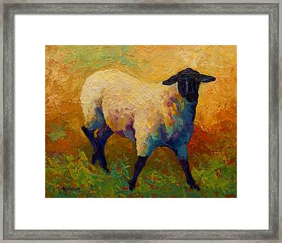 Ewe Portrait Iv Framed Print by Marion Rose