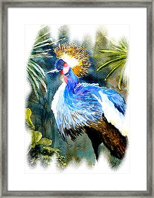 Exotic Bird Framed Print by Steven Ponsford
