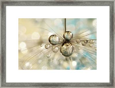 Exploding Dandy Drops Framed Print by Sharon Johnstone
