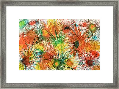 Exploflora Series Number 5 Framed Print by Sumit Mehndiratta