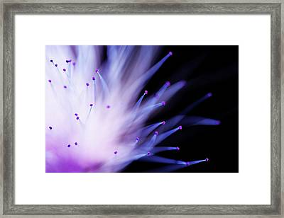 Explosive Framed Print by Mike Eingle