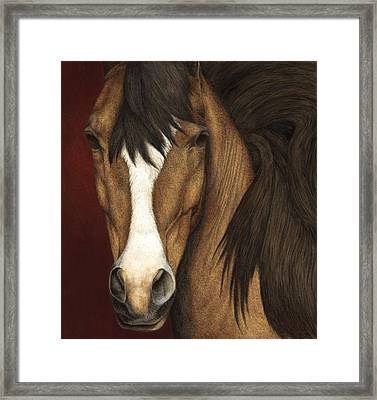 Eye Contact Framed Print by Pat Erickson
