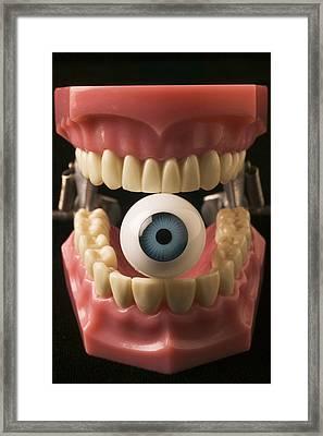 Eye Held By Teeth Framed Print by Garry Gay