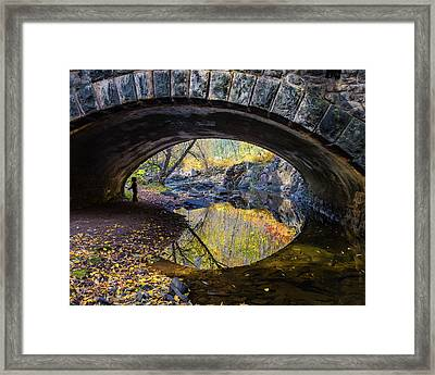 Eye Framed Print by Mary Amerman