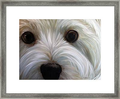 Eye See You Too Framed Print by Mary Sparrow