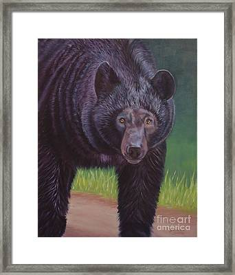 Eye To Eye - Black Bear Framed Print by Danielle Smith
