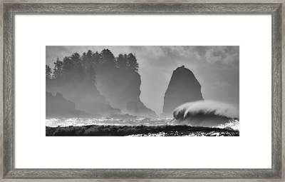 F U R Y Framed Print by Alain Turgeon