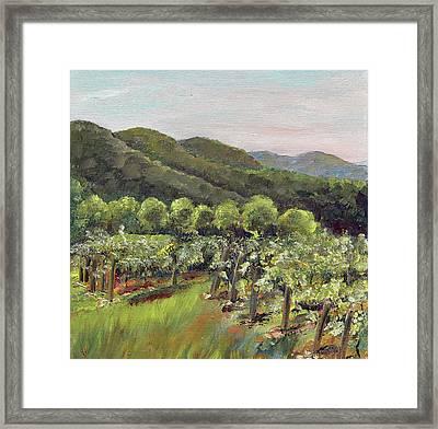 Fainting Goat Valley - Vineyards -  Jasper, Ga Framed Print by Jan Dappen