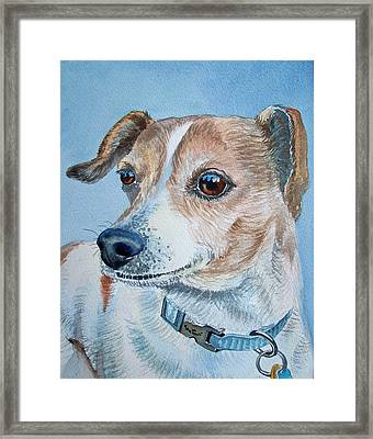 Beloved Dog Commission By Irina Sztukowski  Framed Print by Irina Sztukowski