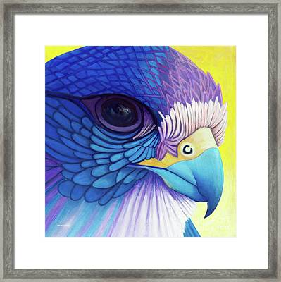 Falcon Medicine Framed Print by Brian  Commerford