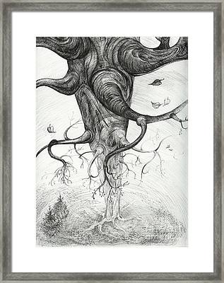 Fall Framed Print by Anna  Duyunova