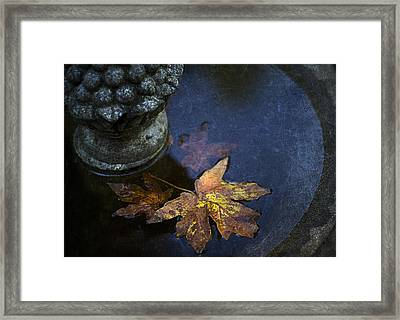 Fall At The Fountain Framed Print by Rebecca Cozart