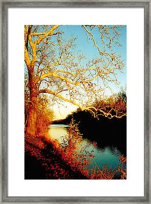 Fall At The Raritan River In New Jersey Framed Print by Christine Till