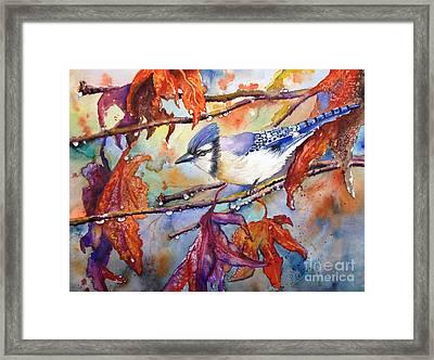 Fall Blue Jay Framed Print by Priti Lathia