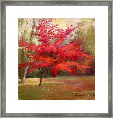 Fall Color Framed Print by Jeanne Rosier Smith