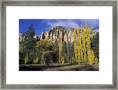 Fall Colors And Red Rocks Near Cave Framed Print by Rich Reid