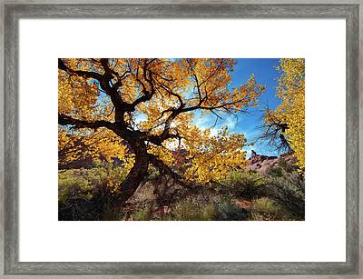 Fall Comes To Arches Framed Print by Jeff Clay