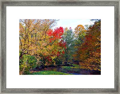 Fall Creek Framed Print by Brittany H