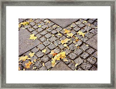 Fall Crossroads Framed Print by JAMART Photography
