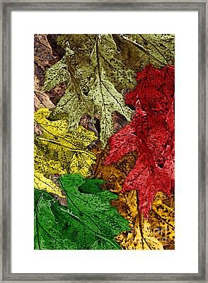 Fall Down Framed Print by Tom Romeo