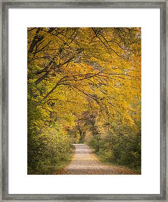 Fall Drive 2015-1 Framed Print by Thomas Young