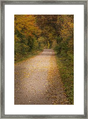 Fall Drive 2015-2 Framed Print by Thomas Young