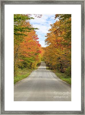 Fall Foliage On The Back Roads Of Vermont Framed Print by Edward Fielding