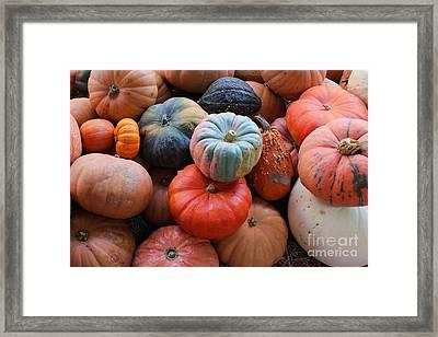 Fall Harvest Framed Print by Robert Wilder Jr