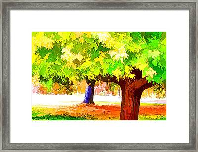 Fall Leaves Trees 1 Framed Print by Lanjee Chee
