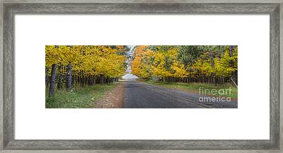 Fall On Esch Road Framed Print by Twenty Two North Photography
