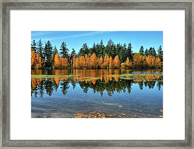 Fall On Wapato Framed Print by Tim Coleman